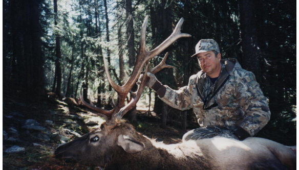 Elk Hunts Colorado