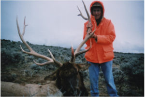 Elk Hunts Colorado