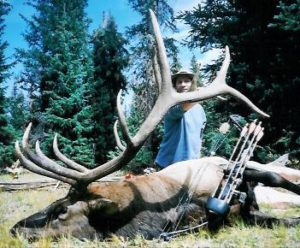 Alpine meadows trophy elk hunt in Colorado