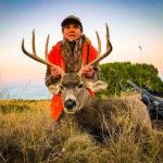 cow elk, bulls and bucks