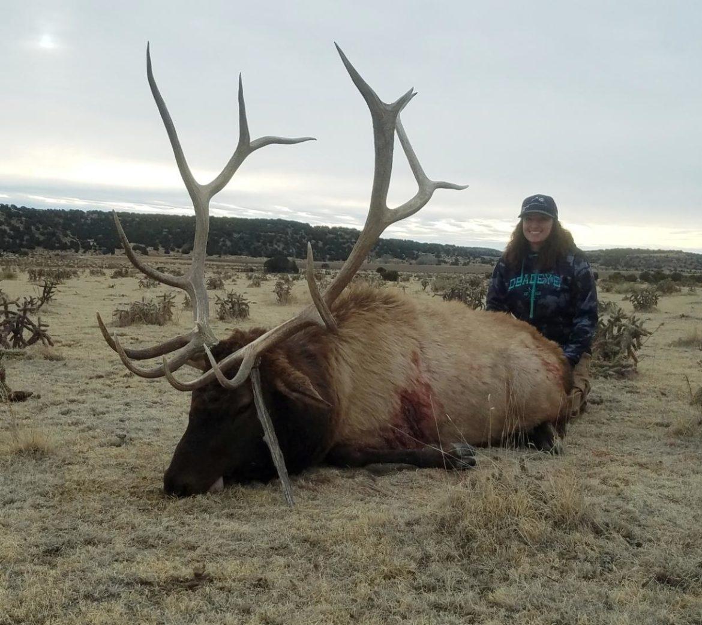 Eastern Colorado Elk Hunts